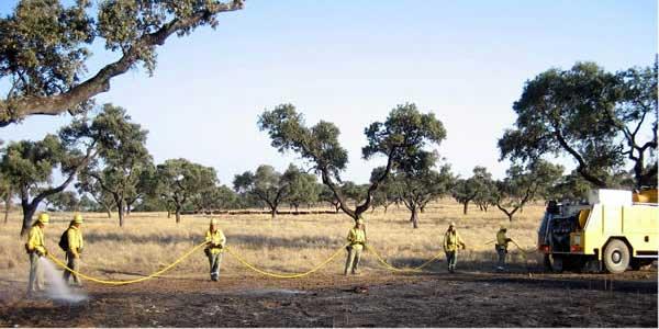 ITURRI Protección Forestal